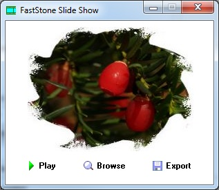 Faststones Slideshow Builder